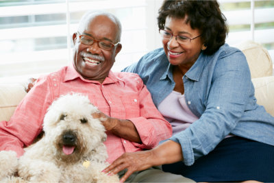 happy elderly couple with a dog at home